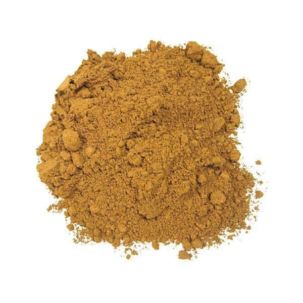 Reishi Polvere Bio